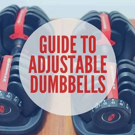 Best 6 Adjustable Dumbbells Review & All You Need to Know   Ab Machines & Abdominal Exercises   Scoop.it