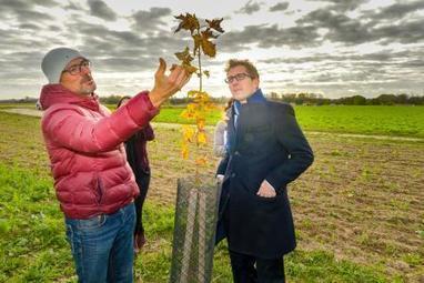 À Houdilcourt, des arbres plutôt que des pesticides | L'actu agricole dans la Marne et la région | Scoop.it
