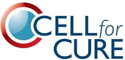 CELLforCURE obtient le feu vert de l'ANSM pour la production de médicaments de thérapie génique   Actualités Santé   Scoop.it