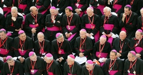 The Bishops are Asking ALL Catholics Do This One Thing… | Life Vigil | Scoop.it