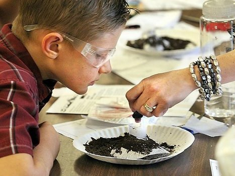 Students take  science experiments into own hands | STEM Advocate | Scoop.it