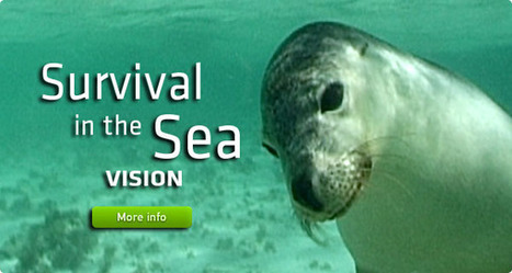 Marine WATERs - Western Australian Teacher Education Resources | Science Sites | Scoop.it