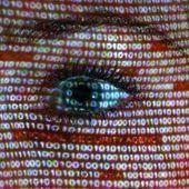Affaire Prism, il faut accélérer notre adaptation au numérique, I. Falque-Pierrotin, Présidente de la CNIL. | Redocumentarisation de l'individu | Scoop.it