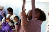 FAO - News Article: FAO urges end of malnutrition as priority | La Spiruline : une algue très douée... pour 1 kg de protéines | Scoop.it