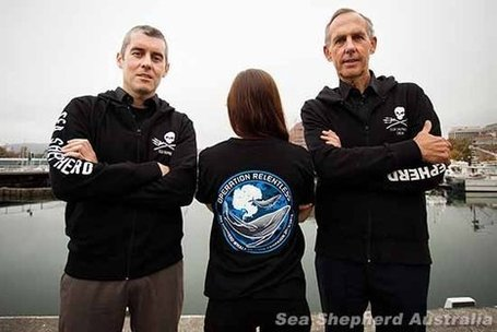 Sea Shepherd launches Operation Relentless | ofcoursevegan | whale news | Scoop.it