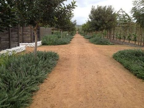 Garden of delights in South Africa's winelands | Vancouver Sun | edible landscaping | Scoop.it