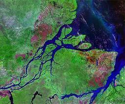 Amazon River exhales virtually all carbon taken up by rain forest | Sustain Our Earth | Scoop.it