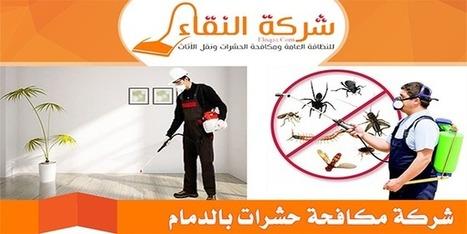 شركة مكافحة حشرات بالدمام بالضمان -0551009502 شركة النقاء | شركة النقاء للخدمات المنزلية تنظيف منازل - مكافحة حشرات - نقل اثاث - كشف تسربات | Scoop.it
