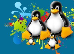 Linux Shared Hosting | webhostingindia | Scoop.it