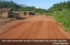 Plaidoyer pour l'affectation des fonds FONER à la réhabilitation des routes en province du Maniema | Agriculture en RDC - République Démocratique du Congo | Scoop.it