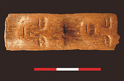 PARUTION : SYRIE : Antiquity Vol 88:339, 2014 pp 81-94 - Juan Jose Ibanez and others - The human face and the origins of the Neolithic: the carved bone wand from Tell Qarassa North, Syria | World Neolithic | Scoop.it