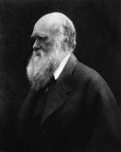 Charles Darwin ou la lutte pour une théorie (1809-1882) | Aux origines | Scoop.it