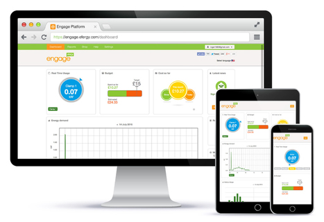 Efergy Energy Monitor: The Best Method To Control The Energy Consumption & Save Money | Energy Monitors | Scoop.it
