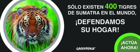 Greenpeace en México | el medio ambiente | Scoop.it