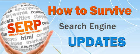 How to Survive Search Engine Updates: Ignore Them - SEO.com   ecommerce and social media best practices   Scoop.it