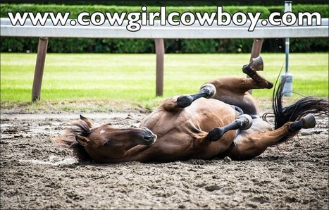 It's My Play Time. | CowgirlCowboy.com | Scoop.it