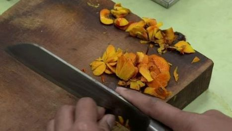 Could a plastic punch revolutionise the lives of palm oil subsistence farmers? - BBC News | International Economics: Pre-U Economics | Scoop.it