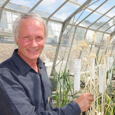 Canberra duo win major accolade for agriculture research   Harvest news   Scoop.it