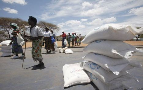 Zimbabwe Imports Corn to Avert Food Shortage | Food Situation - globally | Scoop.it