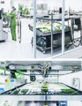 Moss-made pharmaceuticals: from bench to bedside | plant cell genetics | Scoop.it