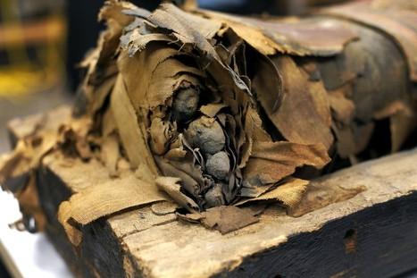 Cientistas tiram múmia de caixão pela primeira vez na história | Science, Technology and Society | Scoop.it