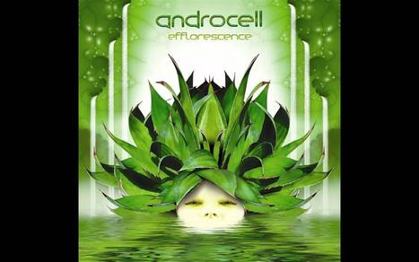 ▶ Androcell - Efflorescence ᴴᴰ - YouTube | Music | Scoop.it