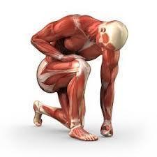 Sports Massage | Sports Ethics: Lloyd, N.P. | Scoop.it