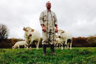 À Crugny, ils ont le charolais dans la peau | L'actu agricole dans la Marne et la région | Scoop.it