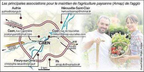 Les Amap se multiplient et ont le vent en poupe | Horticulture urbaine et périurbaine | Scoop.it