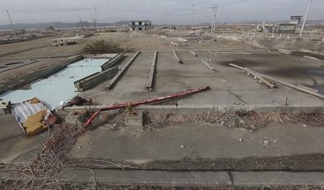 La secuelas de Fukushima, cinco años después de la catástrofe | Apasionadas por la salud y lo natural | Scoop.it