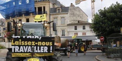 Fronde des agriculteurs : des tracteurs dans les rues de Bergerac   Agriculture en Dordogne   Scoop.it