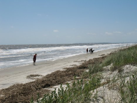 "Storm brewing over Jekyll Island development | Buffy Hamilton's Unquiet Commonplace ""Book"" 