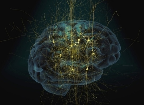 Flagship brain project releases neuro-computing tools | Healthcare | Scoop.it