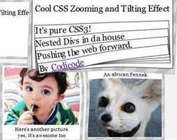 Cool CSS3 Zooming and Tilting Effect | CodiCode | Scoop.it