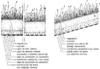 Un empuje hacia la Educación Ambiental: AZOTEAS VERDES | Azoteas Verdes | Scoop.it