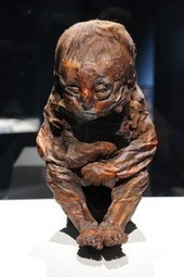 Mummies Show Symptoms, Offer Disease Clues | Heathers Scoop | Scoop.it