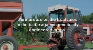 Help Defend Farmers Against GMO Crops! - Organic Connections   Searching for Safe Foods   Scoop.it