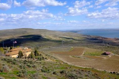 Les vins de l'État de Washington: de belles pistes à suivre (1) | Le vin quotidien | Scoop.it