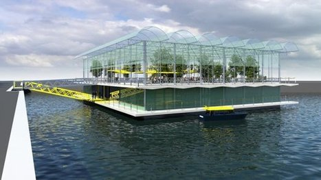 Holy Cow! The World's First Floating Urban Dairy Farm - Urban Gardens | Jardins urbains | Scoop.it