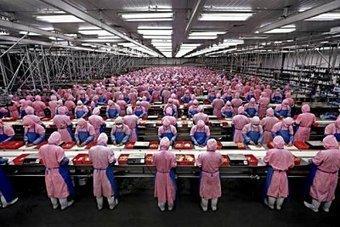 iPhone 6 : des recrutements en Chine dans les usines de Pegatron - GAMERGEN | iphone 6 | Scoop.it
