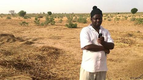 Living Planet: Text messages help farmers   DW.COM   CGIAR Climate in the News   Scoop.it