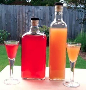 Make Your Own Fruit Wine - Blog | Permaculture, Horticulture, Homesteading & Green Technology | Scoop.it
