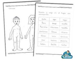 RECURSOS PRIMARIA   Fichas sobre el cuerpo y los sentidos para 1º y 2º de Primaria ~ La Eduteca   Aula TAC   Scoop.it