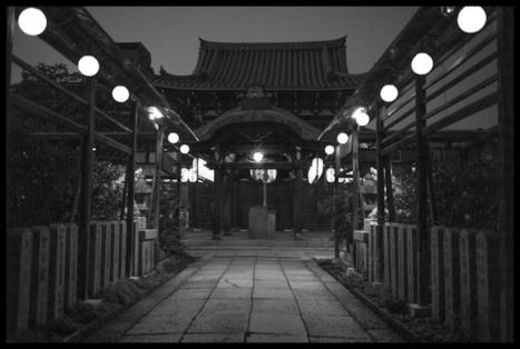 5 Things I Learned in Japan   Adam Marelli Photo   frankstelzerphotography   Scoop.it
