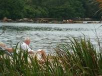 U of I study: Men, people over 65 sleep better when they have access to nature | Seniors: Learning is Timeless | Scoop.it