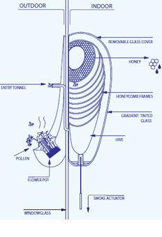 En 2011, Philips inventait une ruche urbaine | Variétés entomologiques | Scoop.it