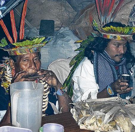 Yagé: guía sobre la mítica bebida que no se debe tomar a la ligera | ayahuasca | Scoop.it