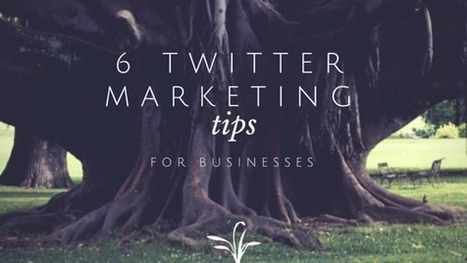 6 Twitter Marketing Tips for Businesses | Twitter Marketing Blog | My Blog 2015 | Scoop.it