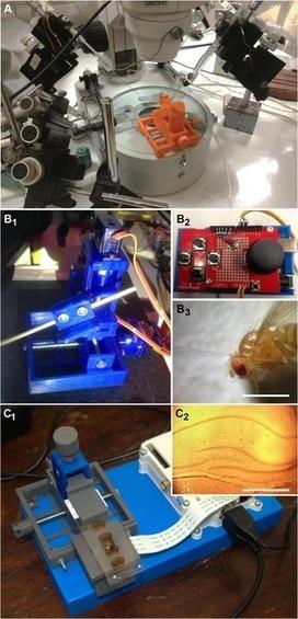Open Labware: 3-D Printing Your Own Lab Equipment | Peer2Politics | Scoop.it