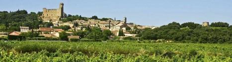 Les 80 ans de l'appellation Châteauneuf-du-Pape | Le Vin et + encore | Scoop.it